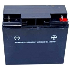 118120007/0 - Batterie sèche 12V - 18AH pour Castelgarden / GGP