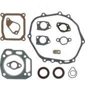 118550438/0 - Kit Joints pour Moteur CASTELGARDEN / GGP