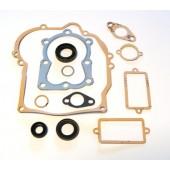 16610006 - Pochette de joints pour moteur TECUMSEH / ASPERA