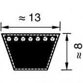A32 - Courroie A32 (13 x 825 mm Li)