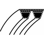 1134-9049-01 - Courroie Double pour tondeuse autoportée STIGA - WOLF